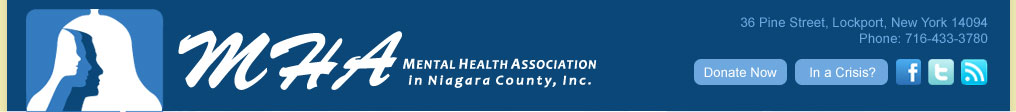 mental health association niagara county ny
